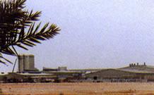 Saudi Arabian Glass Company Ltd